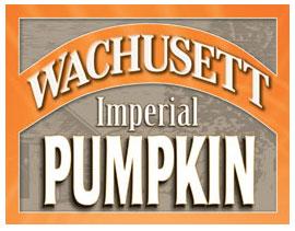 Wachusett Pumpkin