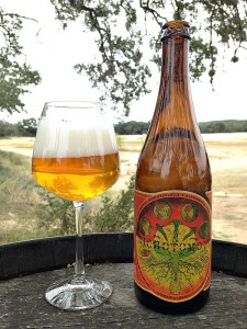 jester king dichotomous